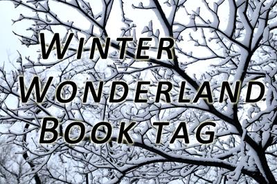 Imagini pentru winter wonderland book tag
