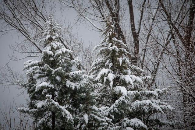 Μερομήνια: Δείτε τι καιρό θα κάνει τα Χριστούγεννα και την πρωτοχρονιά