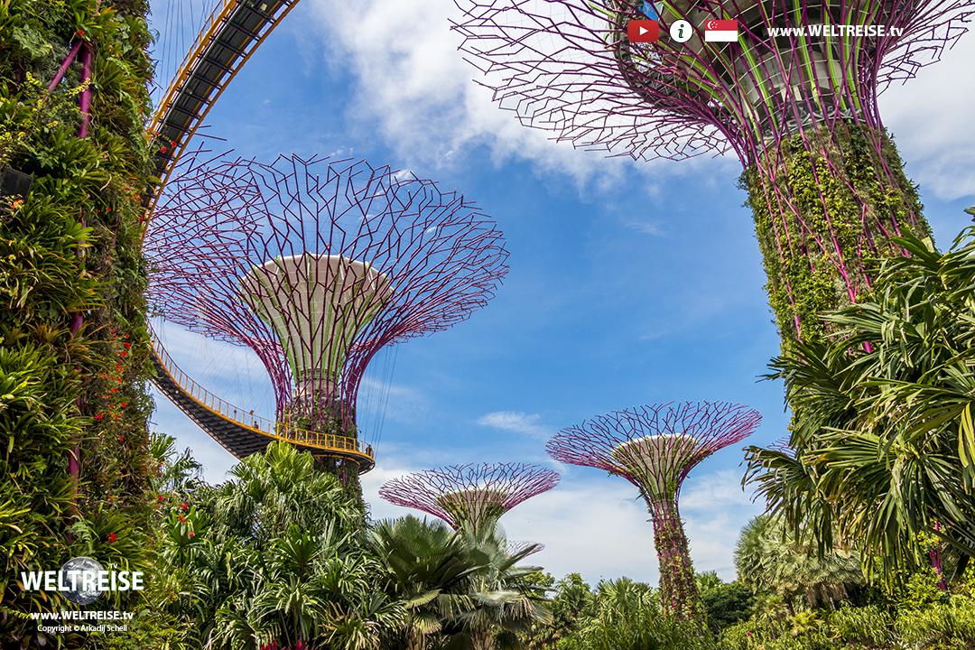 Gardens by the Bay | Singapur | www.WELTREISE.tv # 229