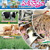 Pasunestham - November 2017 Magazine