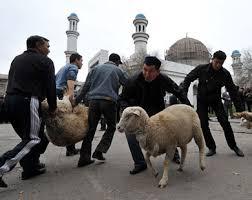 خروف العيد في الصين