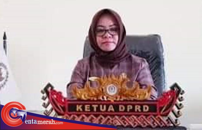 Dugaan Pihak Kecamatan Tanjungraya Kondisikan Proyek DD, Ketua DPRD Mesuji: Inspektorat Segera Periksa