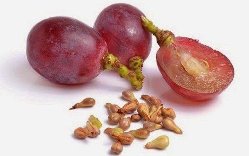 http://www.infokesehatan.biz.id/2016/03/ekstrak-biji-anggur-mampu-melawan-kanker.html