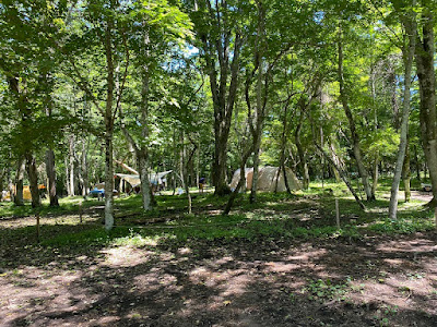 レイクロッジヤマナカ 林間のフリーサイト