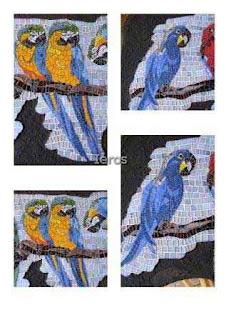 mosaici parietali pappagalli