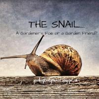 The Snail...A Gardener's Foe or a Garden Friend? [YouTube]