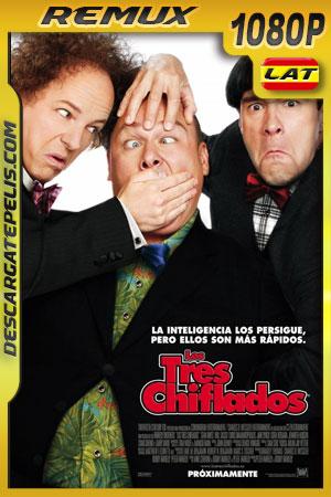 Los tres chiflados (2012) 1080p BDRemux Latino – Ingles