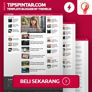 TipsPintar.com AMP