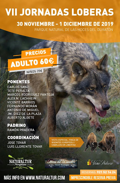 jornadas-loberas-2019