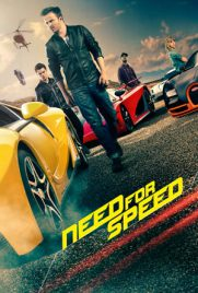 Need for Speed ​​2014