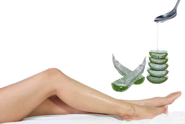 Aloe Vera can be used for athlete's foot