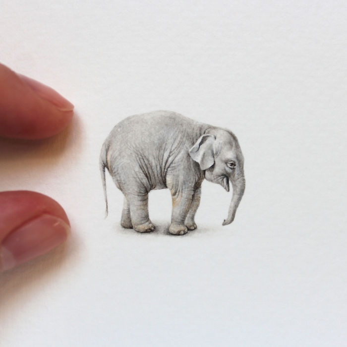 04-Baby-Elephant-Julia-Las-Tiny-Animal-Watercolor-Paintings-and-Other-Miniatures-www-designstack-co
