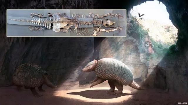 A nova espécie foi chamada de 'Holmesina criptae', o tatu gigante das cavernas (Foto: Ilustração/Julio Lacerda Paleoarte)