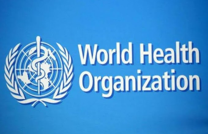 What Is The World Health Organisation ( WHO ) ?