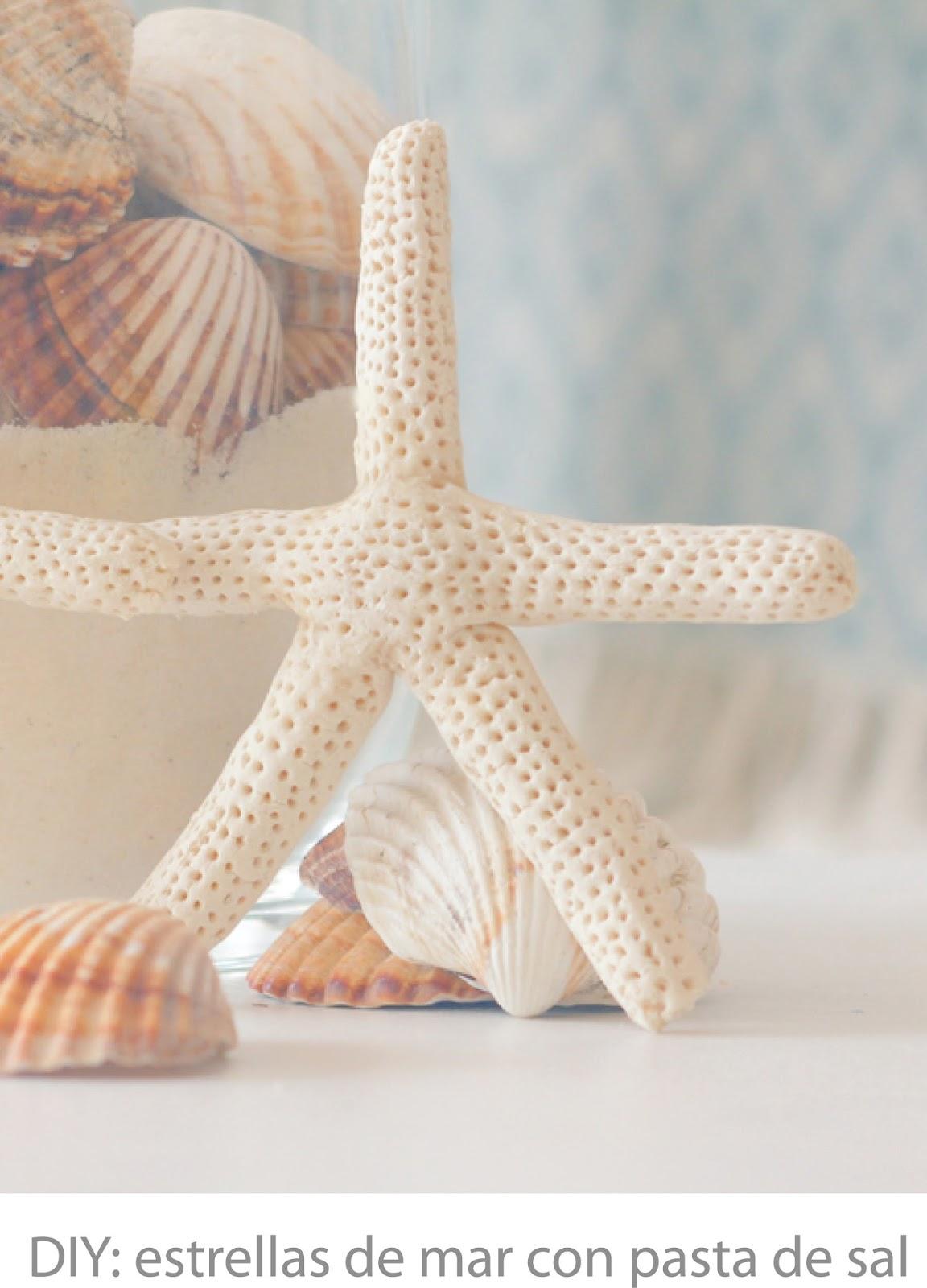 como modelar estrellas de mar