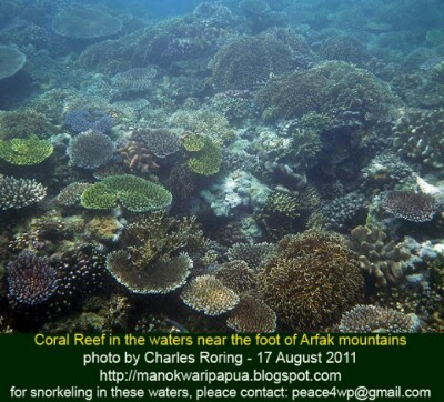 Coral reef preservation