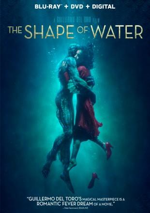 The Shape of Water 2017 BRRip 480p Dual Audio 300Mb