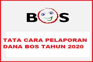 TATA CARA PELAPORAN DANA BOS TAHUN 2020