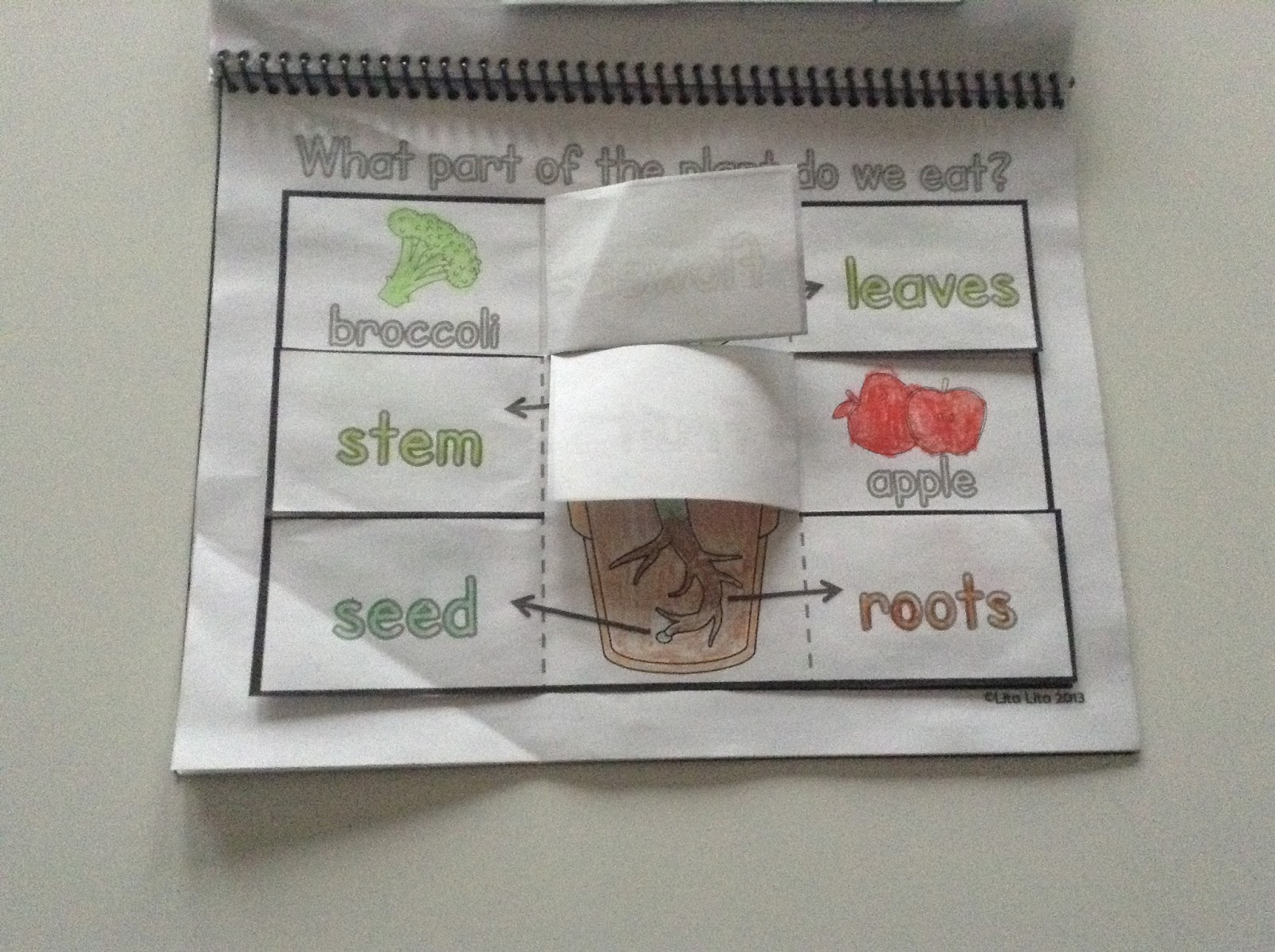 Teachermomplus3 Tops Amp Bottoms Book Review Activity