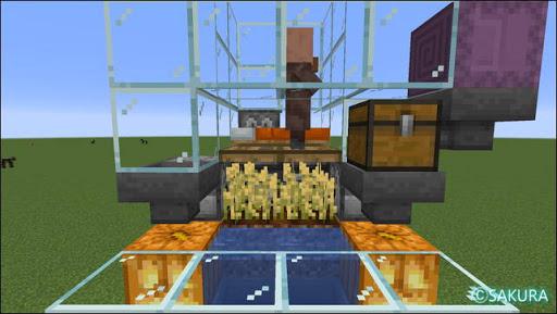 Minecraft 自動小麦畑兼取引所の耕地部分