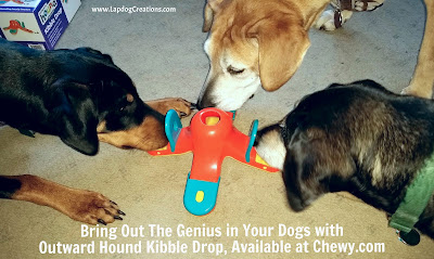 Bring Out the Genius In Your Dogs with #OutwardHound #KibbleDrop, Available at #Chewy.com - #LapdogCreations #doggames #dogplaytime