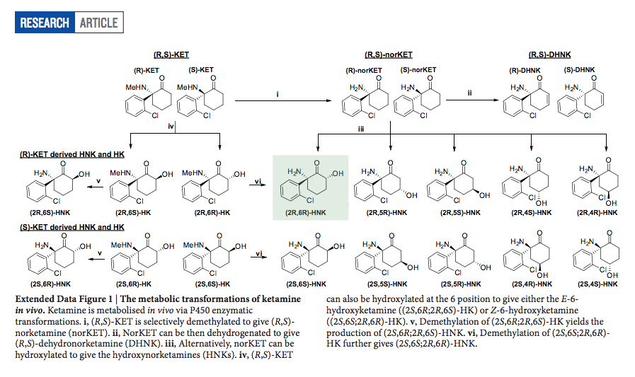 ebe2b479119d The HNK (hydroxynorketamine) metabolites are the major metabolites found in  the plasma and brains of mice after ketamine administration and the plasma  of ...