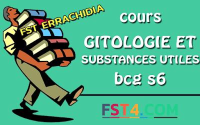Fst errachidia  COURS GITOLOGIE ET SUBSTANCES UTILES BCG S6 PDF