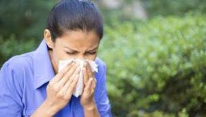 Kenali Penyebab Alergi Pada Tubuh