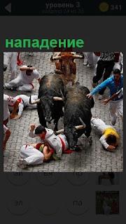 На улице города происходит нападение двух быков на людей
