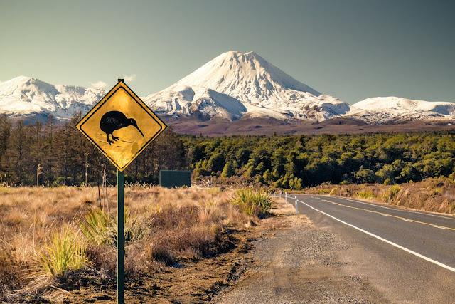 Jom Bekerja Sambil Berjalan Di New Zealand