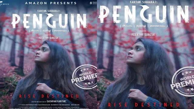 Penguin (amazon-prime) web series cast, release date & official trailer