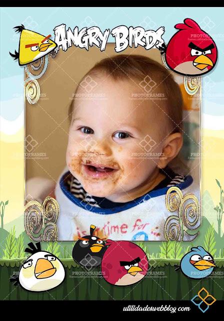 Marco digital para fotos de los Angry Birds