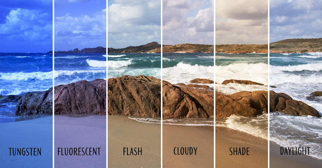 Common settings for photographic white balance