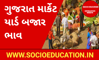 Gujarat Marketyard Bhav