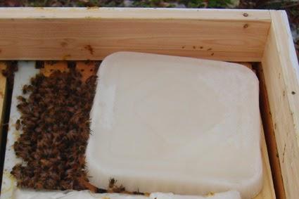 Σούπερ συνταγή για μελισσοτροφή για τους αναγνώστες μας video