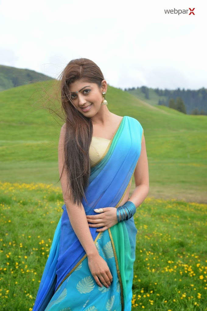 Pranitha Hot Photo Gallery in Saree Stills                 hd wallpapers