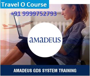 Travel and Tourism Courses : Amadeus GDS Training Course