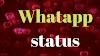 whatsapp status download   Best love status download   love shayari status