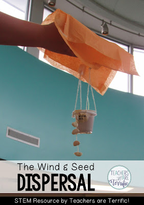 STEM Challenge: the group built a parachute for their seeds and then dropped it. It's a form of seed dispersal!