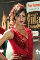 Videesha in Spicy Floor Length Red Sleeveless Gown at IIFA Utsavam Awards 2017  Day 2  Exclusive 09.JPG