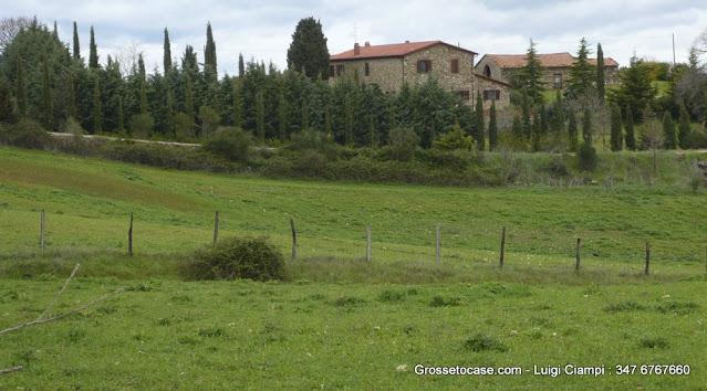 Casale vendita Scansano - Grosseto Invest Immobiliare -