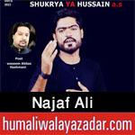 https://aliwalayazadar.blogspot.com/2020/09/najaf-ali-nohay-2021.html