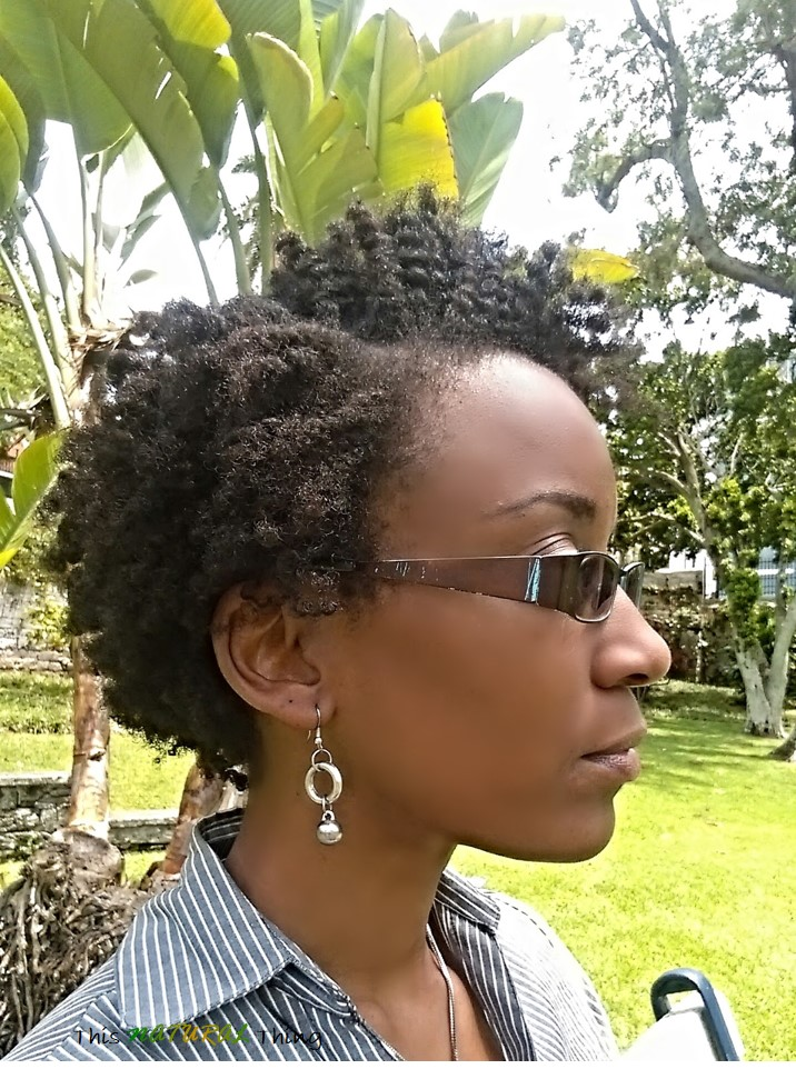 The Style with a Double Life | Twist Out on Short (TWA) Natural Hair