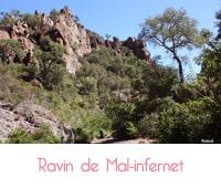 Balade au cœur du ravin de Mal Infernet (Massif d'Esterel)
