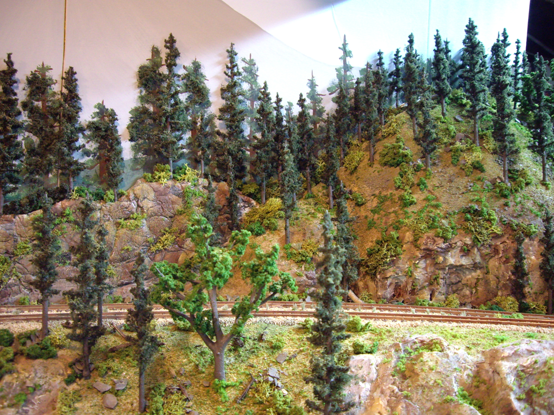 Plaster rock outcroppings and plaster terrain with various ground foam, trees, and talus to create a forest scene
