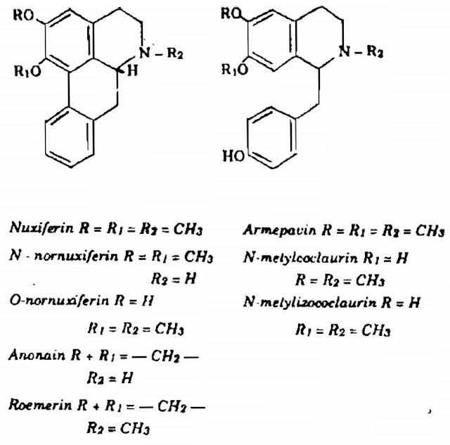 TP Hóa học CÂY SEN - Nelumbo nucifera - Nguyên liệu làm Thuốc Ngủ, An Thần, Trấn Kinh