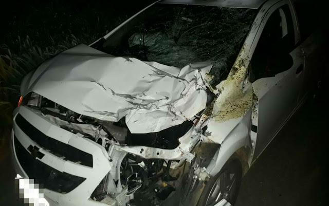 Carro colide com cavalo entre Barreiras e Cristópolis, deixa três pessoas feridas e animal morto