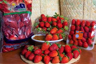 Morango produzido na Chapada está fazendo sucesso na 11ª Feira Baiana da Agricultura Familiar