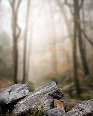 Stone Blur Background Free Stock Image