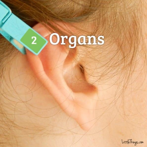 Berbagai Penyakit Langsung Menjauh, Cukup Pijat Seperti ini di 6 Area Telingamu